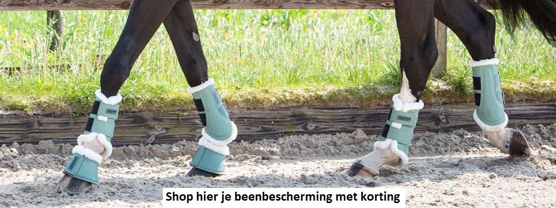 Beenbescherming voor je paard shoppen met korting bij BudgetRuitershop.nl