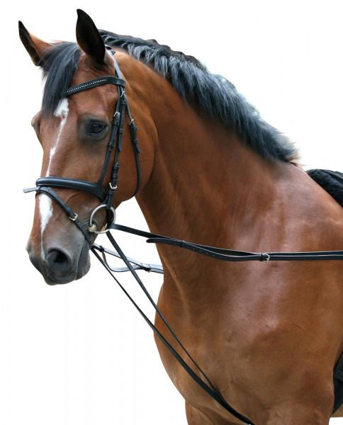 5 manieren om je paard te longeren