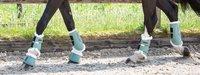 Wat zijn de juiste peesbeschermers voor mijn paard?