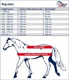 Harry's Horse Uitrijdeken Reflective_