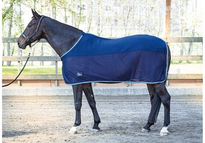 Harry's Horse Coolerdeken Denici Cavalli